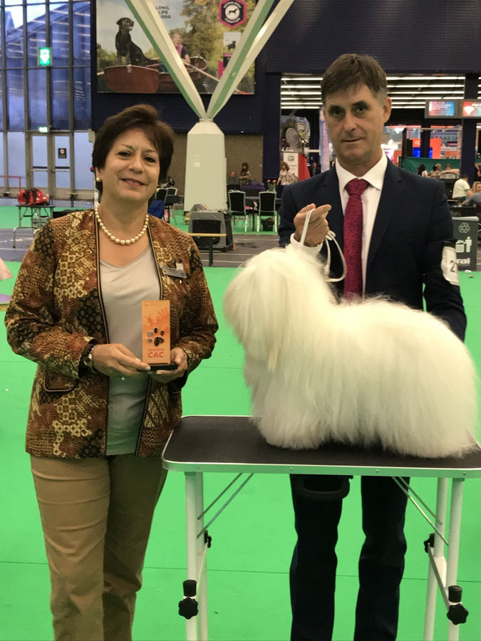 Specialities_show_2018_Reserve_CAC
